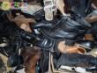 Az adó 1 százalék felajánlásoknak is köszönhetően a Mátrix Alapítvány évente ezernyi pár cipővel segíti a rászorulók túlélését